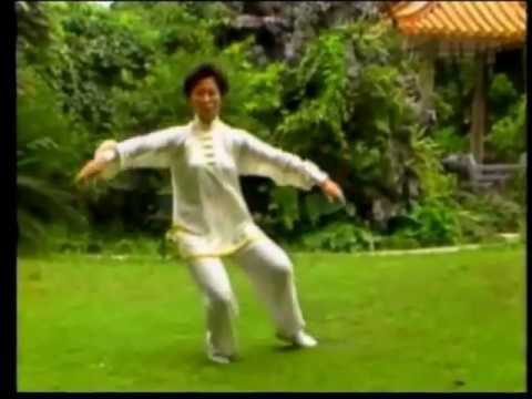 """ Do Your TAIJI With My Beautiful Music "".......a Traditional Yang Shi Quan 24 Form !"