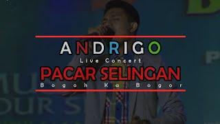 Andrigo Pacar Selingan Bogoh Ka Bogor (Live Concert)