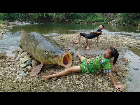 Primitive Fishing Skills Catch Big Carp Under The Sand For Survival - Skills Cooking Fish Delicious