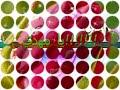 2010 ya mahdi ♥ ♥ يا مهدي دخيلك - على المسلم