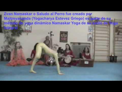 Svana Namaskar – Saludo del Perro de Yoga Integral ® de Maitreyananda