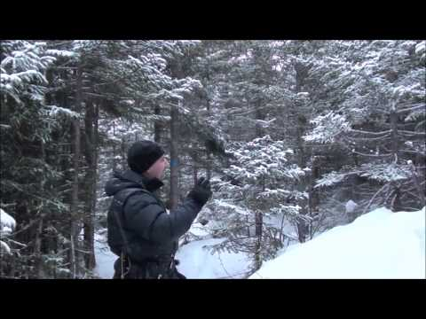 Mountainside Cabin & A Tough Winter Hike (видео)