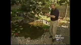 Aquascape on Good Morning America 1997