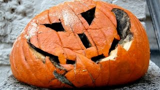 PINTERTEST- MAKING PUMPKINS LAST FOREVER?