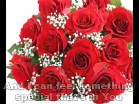 999 Roses Of Love