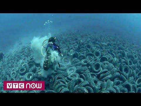 Pháp: trục vớt 25.000 lốp xe dưới đáy biển | VTC1 - Thời lượng: 55 giây.