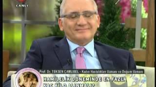 Prof. Dr. Teksen Çamlıbel - Gülben