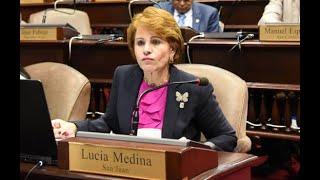 Masivo rechazo encuentran las declaraciones de la diputada Lucía Medina sobre la reelección