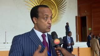 11ኛው የአፍሪካ ህብረት መሪዎች አስቸኳይ ጉባኤ/አዲስ ነገር ህዳር 8.2011ዓ.ም/11th African leaders meeting what's new 17,2018
