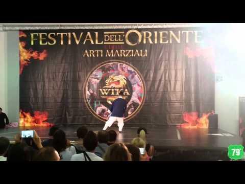 Festival dell'Oriente 2015 - Arti marziali