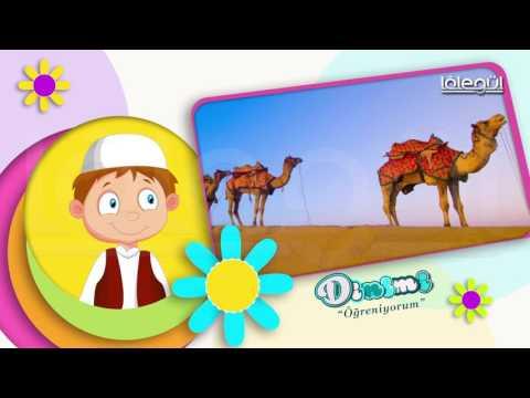 Dinimi Öğreniyorum Bölüm 10