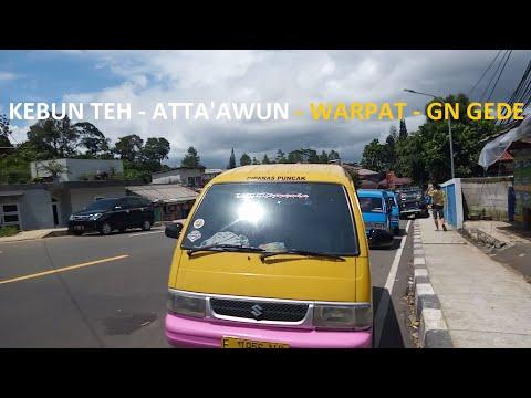Rute Naik Angkot dari Stasiun Bogor ke Puncak & Cipanas (Part 2 of 2) Puncak - Kebun Teh & Cipanas