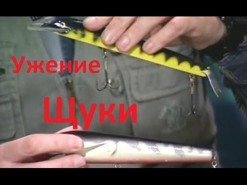диалоги о рыбалке ловля щуки на спиннинг видео