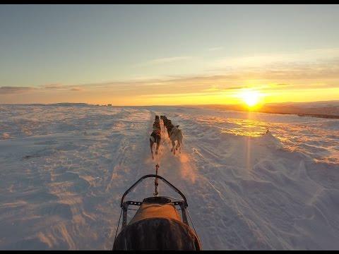 Finnmarksløpet