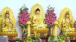 ĐĐ.Thích Giác Nhàn Niệm Phật Địa Chung cùng Đại Chúng