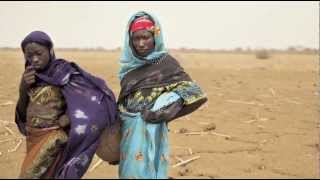 West Africa Food Crisis: Close The Funding Gap