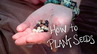 How To Plant Seeds - Farming And Gardening Tutorial - Revolutionary Roots