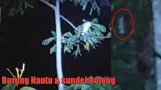 Video ⚫️Review!!! Penelusuran sundel bolong😱 MP3, 3GP, MP4, WEBM, AVI, FLV Desember 2018