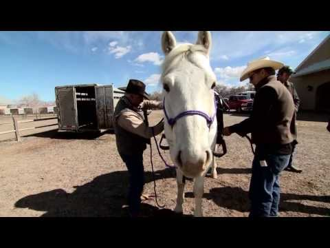 The Lone Ranger -  Cast Training Behind the Scenes Featurette