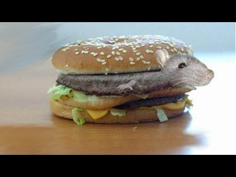 10 Shocking McDonalds Facts You Didn't Know