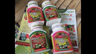 Video TUTORIAL  Cara stek batang tanaman dengan formula Nature Stek MP3, 3GP, MP4, WEBM, AVI, FLV September 2018