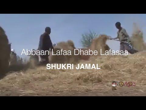 Shukri Jamal – Abbaan lafaa dhabe lafasaa (Oromo Music 2014 New)