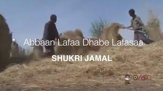 Shukri Jamal - Abbaan Lafaa Dhabe Lafasaa