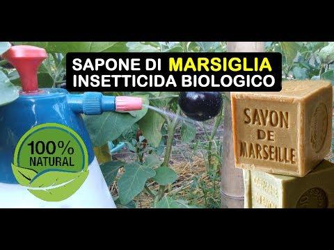 SAPONE DI MARSIGLIA INSETTICIDA BIOLOGICO