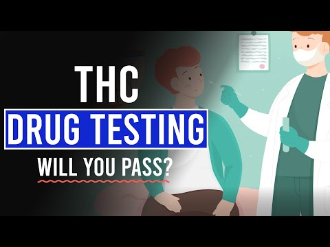THC Drug Testing: Will you PASS or FAIL?