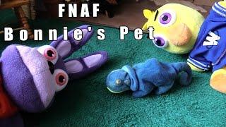 Download Lagu FNAF plush Episode 53-  Bonnie's Pet Mp3