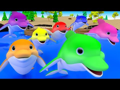 Colors for Children to Learn with Cartoon Dolphins Color Water 3D Kids Toddler Babies Learn Colors