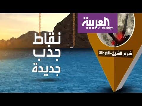 العرب اليوم - اتفاق سعودي -مصري لزيادة مساحة