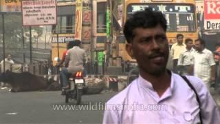 Meerut India  city photos gallery : City of Meerut