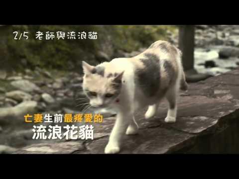 【老師與流浪貓】短版預告