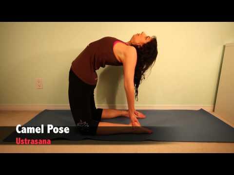 Top 10 Favorite Yoga Postures – LexiYoga