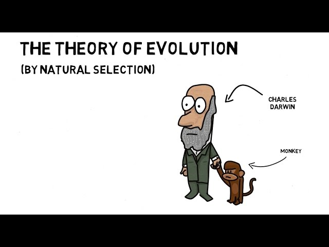 the theory of natural selection and evolution as incomplete works of charles darwin Charles darwin, in his theory of natural selection, said evolution must  in  darwin's time, and it tells a different – though still incomplete – story.