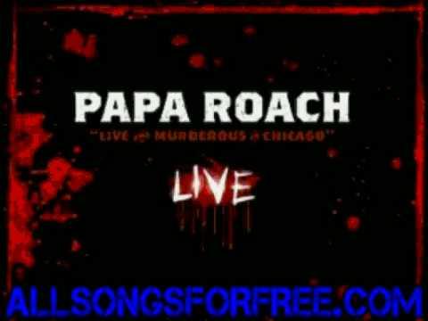 Tekst piosenki Papa Roach - M 80 (Explosive Energy Movement) po polsku