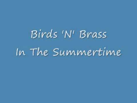 Birds 'N' Brass – In The Summertime.wmv