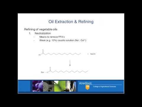 Refining Food-Grade Oil