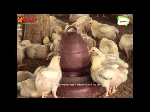Download Real life story of Bijoy Thangchangya, Indigenous Agro Entrepreneur (Poultry Sector) HD Mp4 3GP Video and MP3