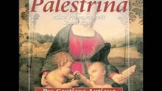 Download Lagu Palestrina Missa Papae Marcelli Vol. 5 Mp3