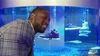 Dwyane Wade's Sneaker Tank | Tanked