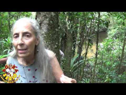 Clydia Davenport da Anap x Transposição do Rio Juquiá para a Represa do Guarapiranga