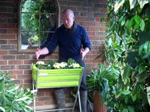 VegTrug Poppy – A great way to grow herbs, veggies and flowers
