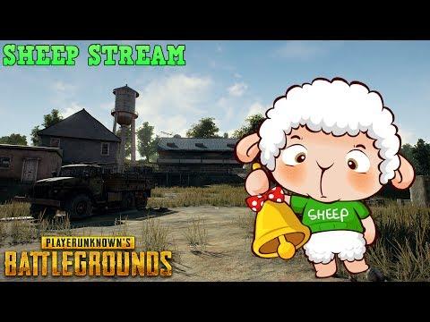 Battlegrounds Việt Nam: Sao mà khó ngủ !!!