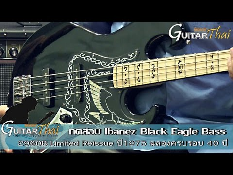 Review Ibanez Black Eagle Bass Reissue 1975 By Www.Guitarthai.com