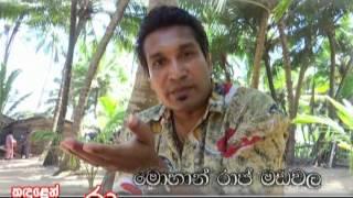 Panadura Sri Lanka  city images : Sri lankan arrack history - Panadura wadaya