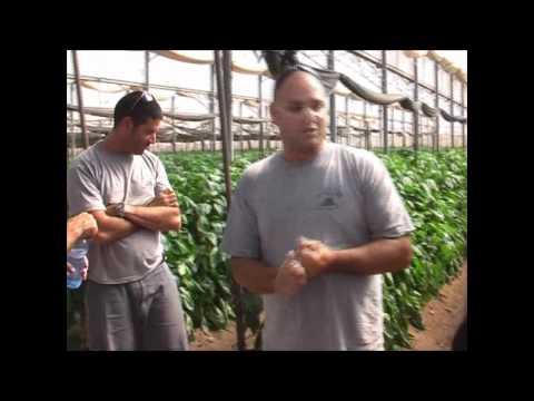 ביקור שרת החקלאות בערבה