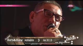 Zadruga - Zadrugovizija 4: Lepi Mića - Ma gde god bila - 11.06.2018.