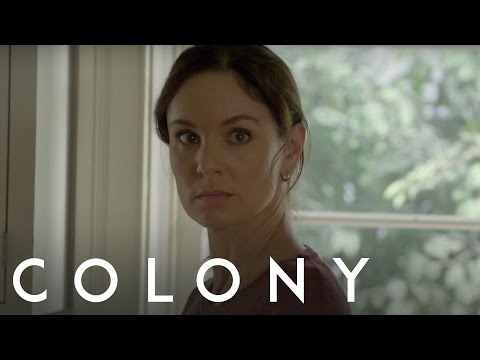 Colony 2.11 (Preview)